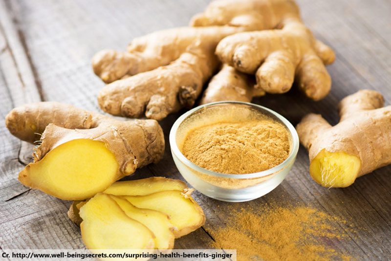 ขิง, Ginger, Thai Herb