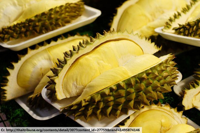 Durian, ทุเรียน, ผลไม้ไทย